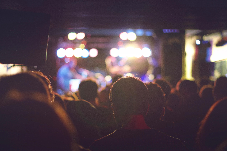 concert, crowd of people 2-2.jpg